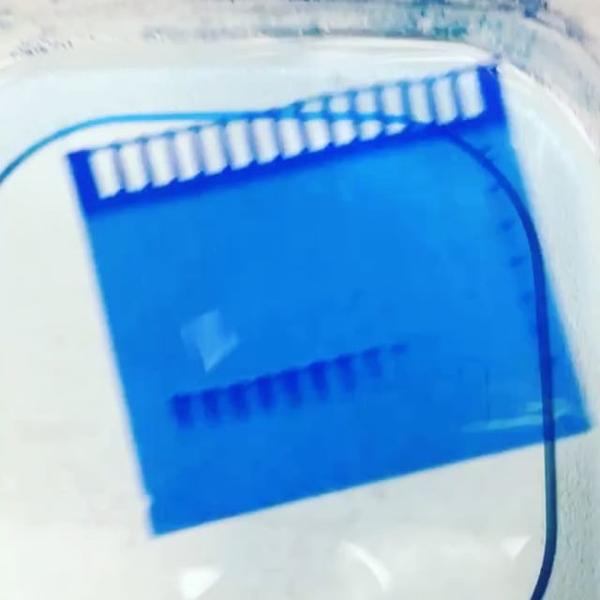 Instagram post BWv4TcoHxjw